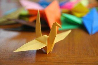 origami-004web
