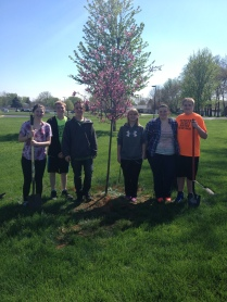 Tree Planting 4'17 (3)