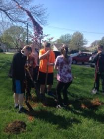 Tree Planting 4'17 (4)